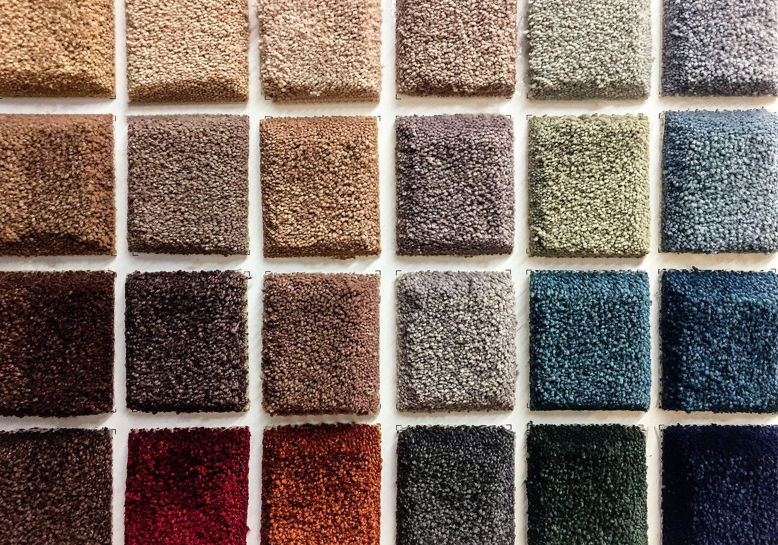 Carpet Concept. Shop carpets. Picker carpet. Carpet samples in the store. carpet made of looped and sheared fibers, carpet color samples